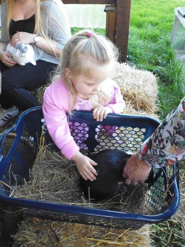 2017-10-14-13-44-11_Bilder Ausflug Bauernhof Familie Bein