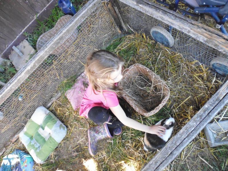 2017-10-14-13-58-32_Bilder Ausflug Bauernhof Familie Bein