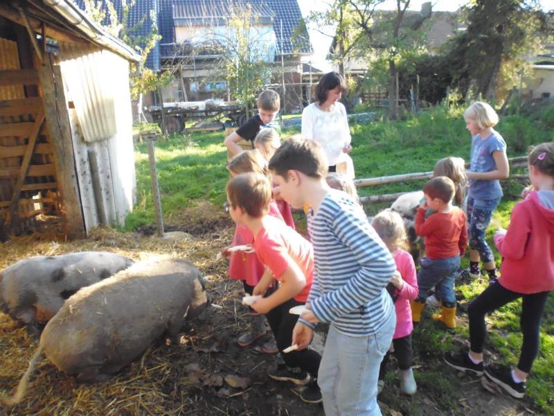 2017-10-14-15-34-29_Bilder Ausflug Bauernhof Familie Bein