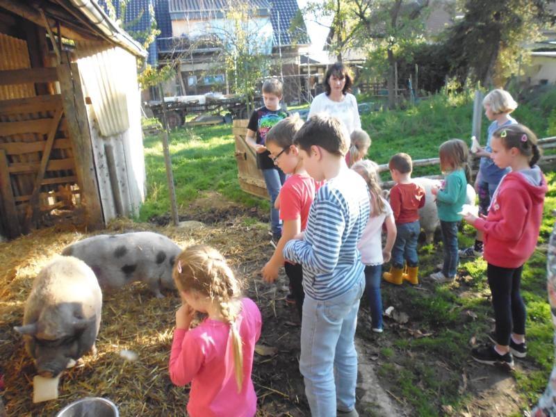 2017-10-14-15-34-34_Bilder Ausflug Bauernhof Familie Bein