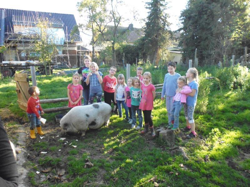 2017-10-14-15-35-32_Bilder Ausflug Bauernhof Familie Bein