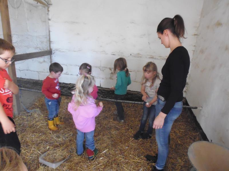 2017-10-14-15-42-34_Bilder Ausflug Bauernhof Familie Bein