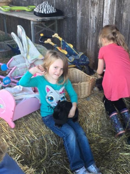 2017-10-28-21-54-28_Bilder Ausflug Bauernhof Familie Bein