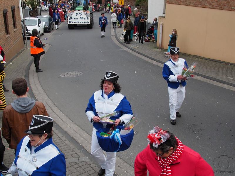 2017-02-26_15-40-51_Bilder Karnevalszug Fischenich 2017 (D. Schueller)