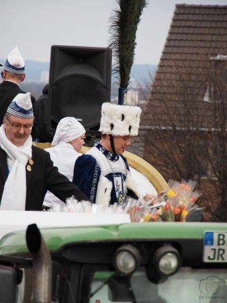 2017-02-26_15-43-33_Bilder Karnevalszug Fischenich 2017 (D. Schueller)
