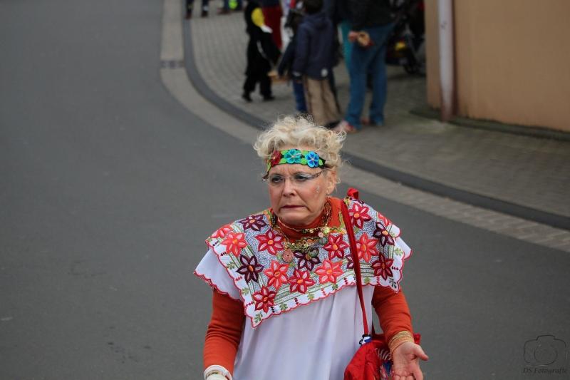 2017-02-26_16-16-38_Bilder Karnevalszug Fischenich 2017 (D. Schueller)