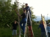 bilder-kunos-aufstellen-4