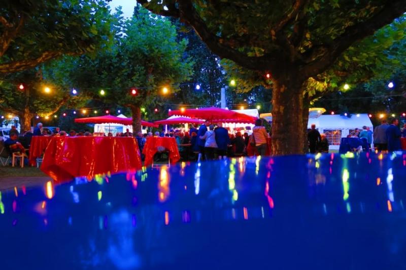 2017-09-02_19-40-20_Bilder Musik im Park 2017 (T. Thomas)