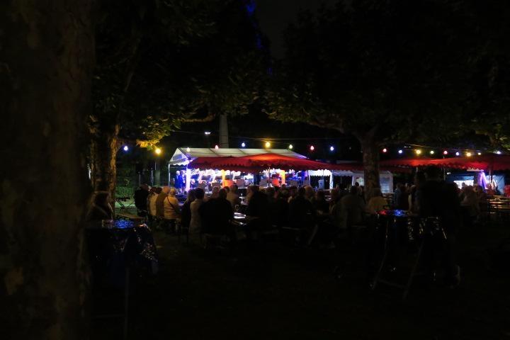2017-09-02_20-57-08_Bilder Musik im Park 2017 (T. Thomas)
